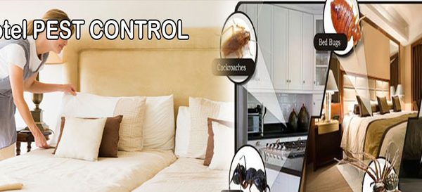 pest-control-for-hotels