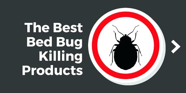 Most Effective Bed Bug Spray Reviews