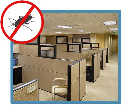 pests-in-office