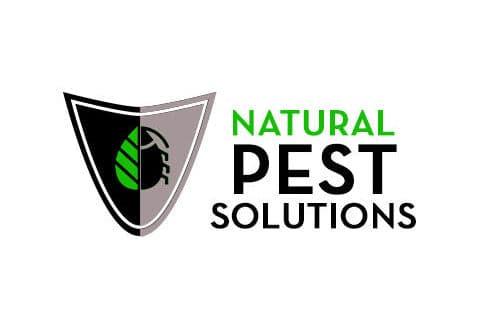Pest Control companies near me